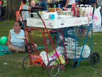 Two Bubbe carts form a picnic table in East River Park, photo by Pat Arnow, July 4